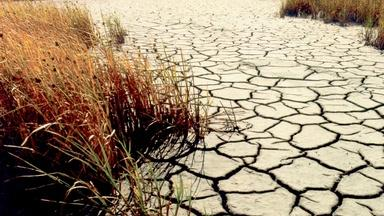 Using Technology to Cope With Drought