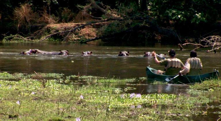 Joseph Rosendo's Travelscope: Zambia - Bush & River Safari