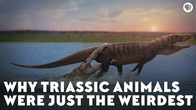 Eons: Why Triassic Animals Were Just the Weirdest