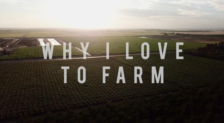 American Grown: My Job Depends on Ag: American Grown: My Job Depends on Ag - Why I Love to Farm