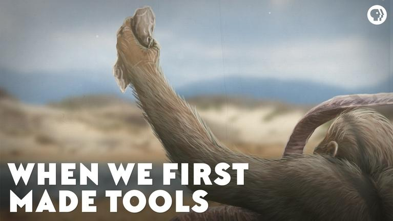 Eons: When We First Made Tools