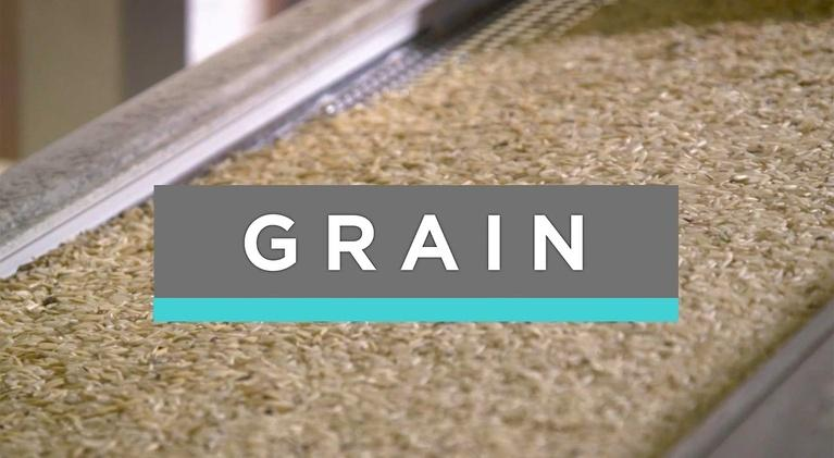 Feast TV: Best of Feast TV: Grain