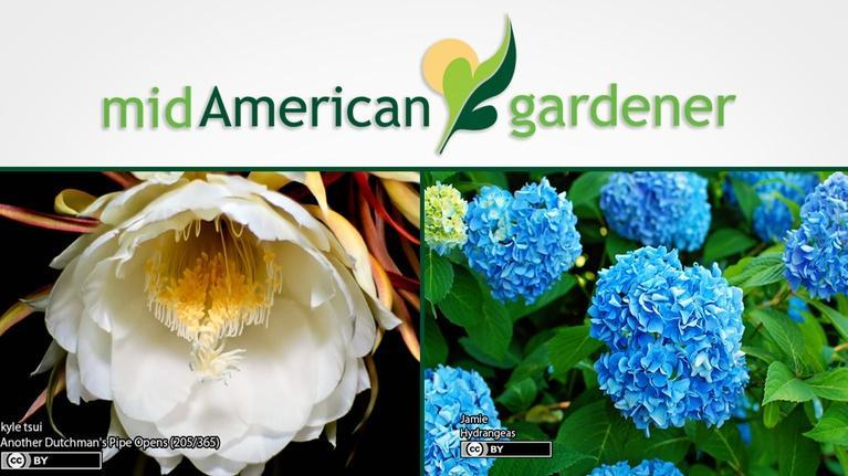 Mid-American Gardener: Mid-American Gardener with Jen Nelson, April 5, 2018