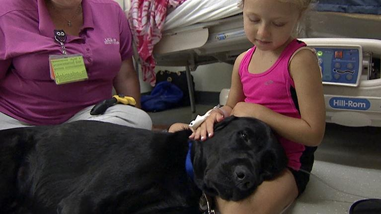 KVIE Digital Studios: Huggie the Facility Dog | Focus on Health