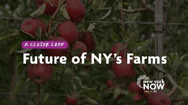 The Future of New York's Farms