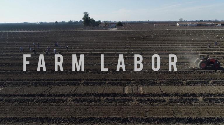 American Grown: My Job Depends on Ag: American Grown: My Job Depends on Ag - Farm Labor Crisis