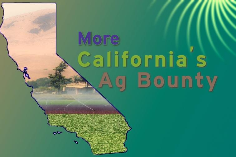 ViewFinder: More California's Ag Bounty Thumbnail