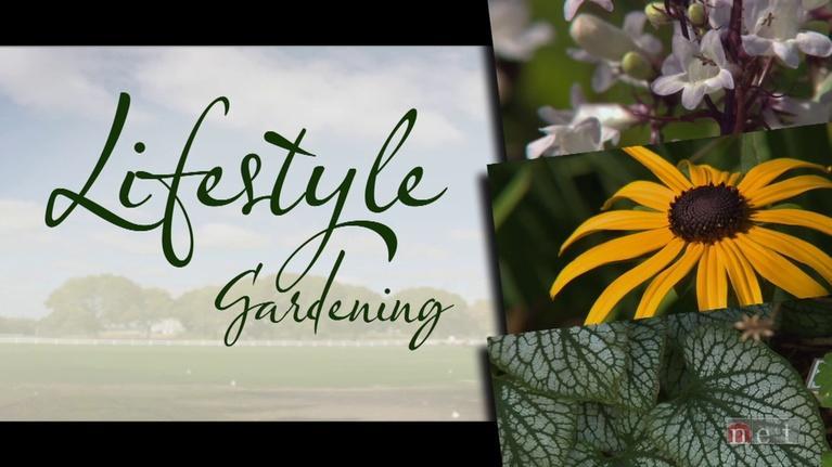 Backyard Farmer: Backyard Farmer: Lifestyle Gardening: Pre-Emergent Herbicide