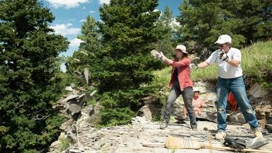 There's Something Fishy in Montana's Fossil Deposits