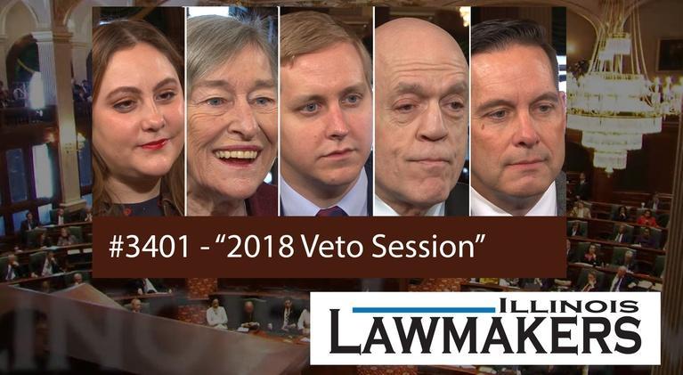 Illinois Lawmakers: S34 E01: 2018 Veto Session