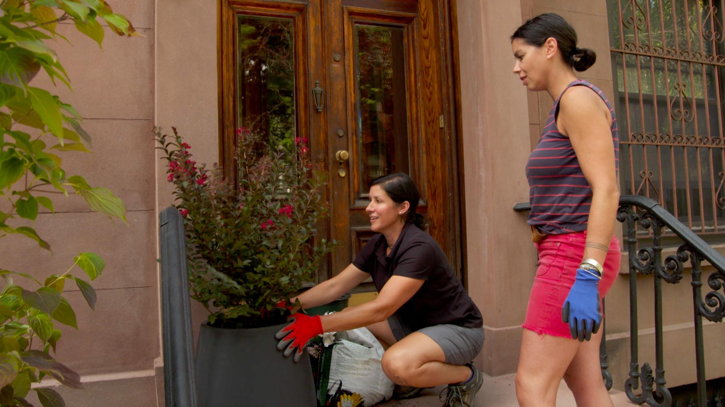 Stoop, Planters, Fireplace Insert | Ask TOH
