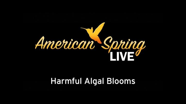 WQLN Local Productions from the 2010's: American Spring Live - Harmful Algal Blooms Part 1