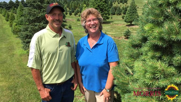 Prairie Yard & Garden: Christmas Tree Production