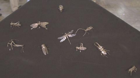 Antiques Roadshow -- S21 Ep19: Appraisal: Meiji Period Silver Insects