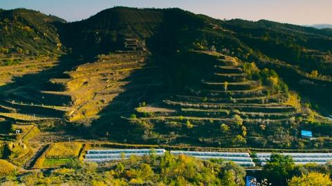 The Age of Nature -- The Impact of the Loess Plateau Rehabilitation Project