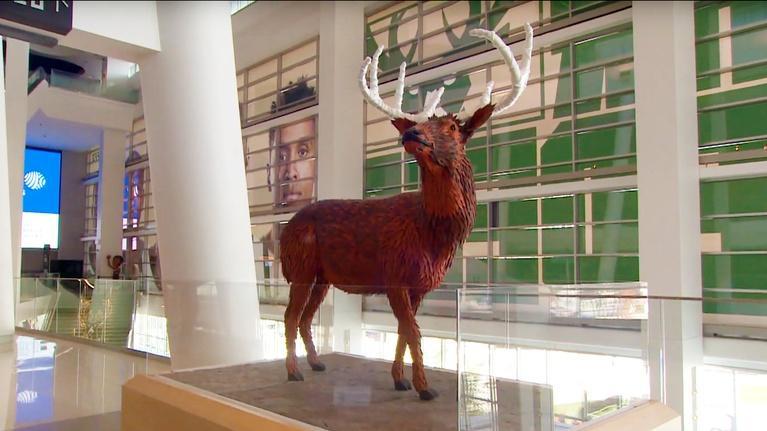 The Arts Page: Milwaukee Bucks Art Collection