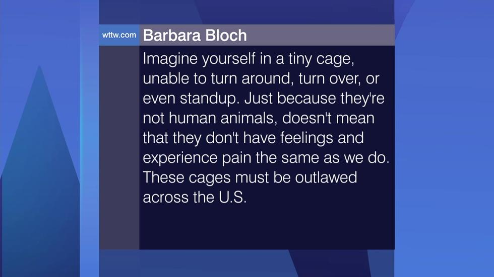 Viewer Feedback: 'These Cages Must be Outlawed' image