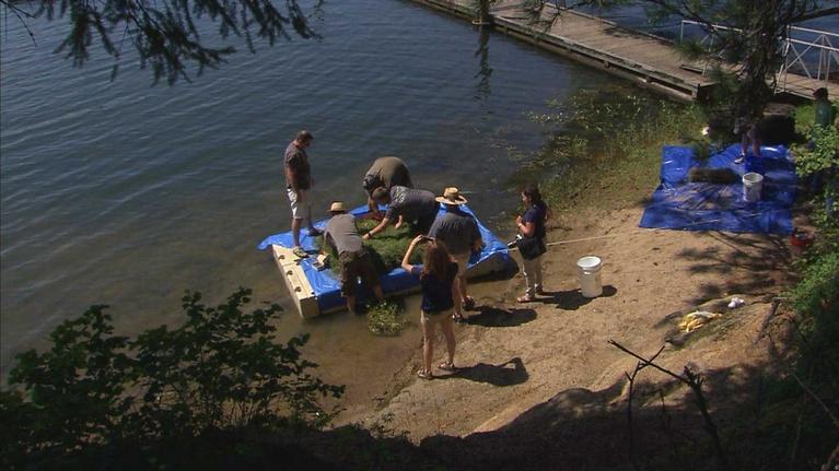 Idaho Science Journal: Hayden Lake Experiment