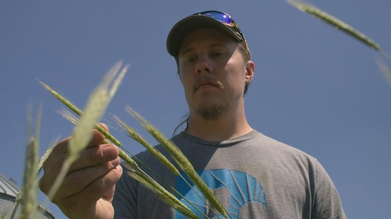 PBS NewsHour: Can sustainable farming save Iowa's precious soil and water?