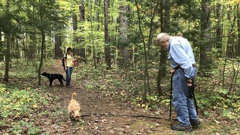 Forest Therapy With Dogs (Preview)