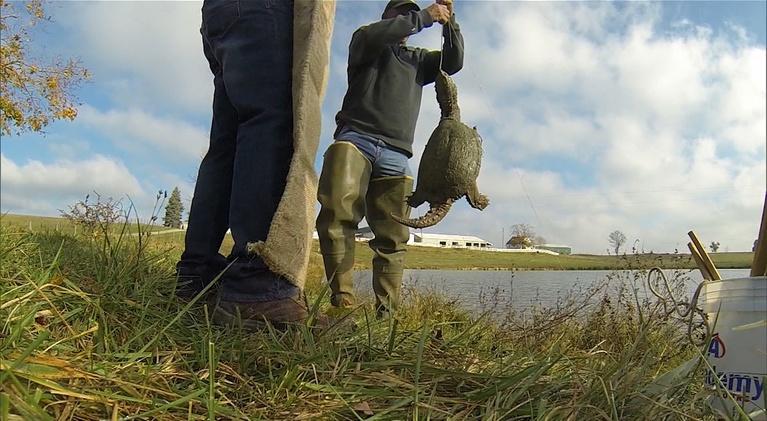 Kentucky Afield: Rabbit Hunt; Venison Recipe; Catching Turtles