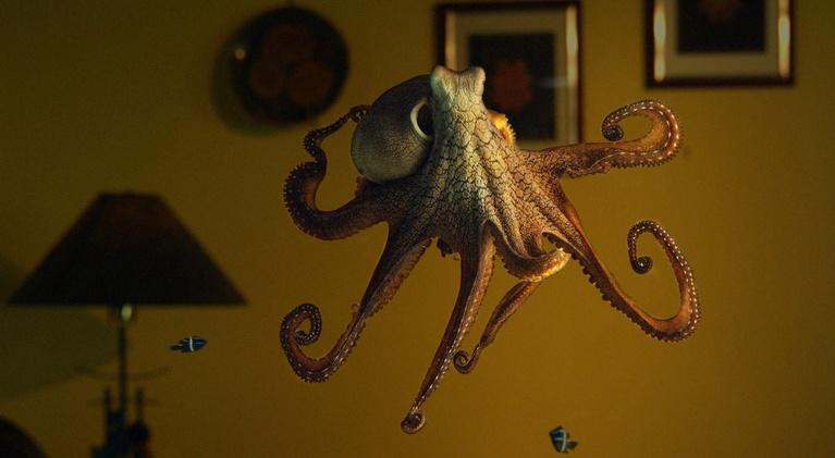 Nature: Octopus: Making Contact Preview