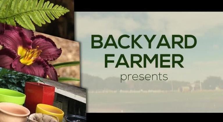 Backyard Farmer: Backyard Farmer: Lifestyle Gardening: Landscape Grading