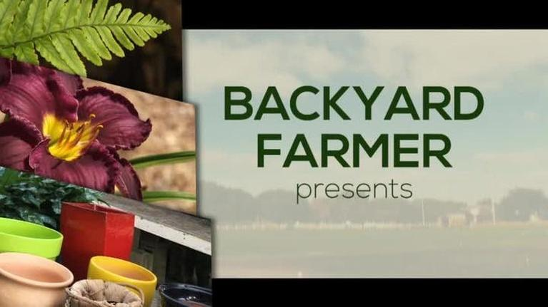 Backyard Farmer: Backyard Farmer: Lifestyle Gardening: Landscape Grading