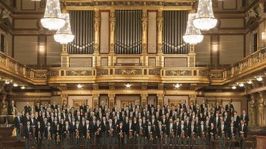 "Strauss' ""The Beautiful Blue Danube"""