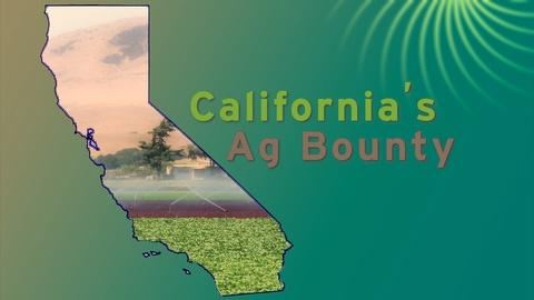 ViewFinder -- California's Ag Bounty