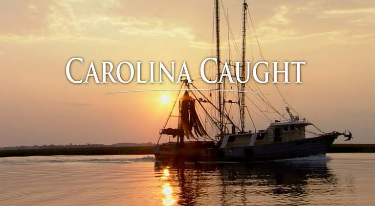 Carolina Stories: Carolina Caught