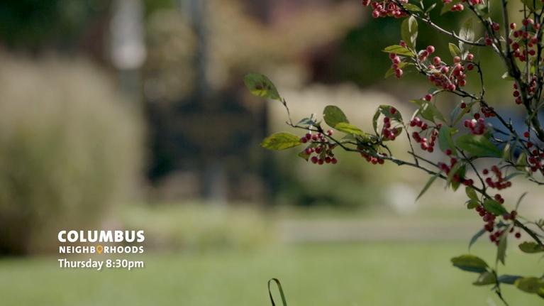 Columbus Neighborhoods: Getting Outdoors Preview