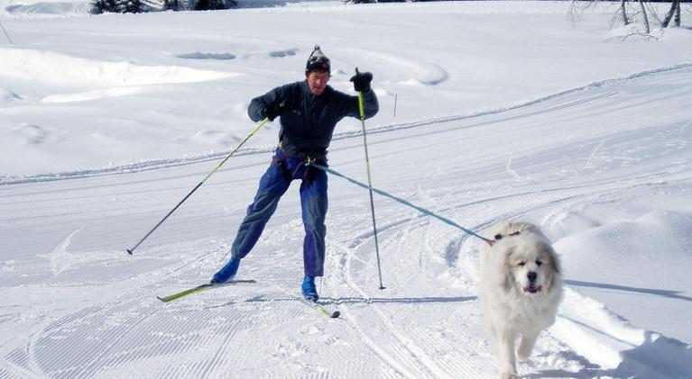 Scout-Adventure: Winter Play (OUTDOOR IDAHO)