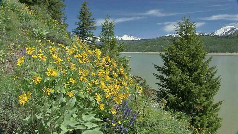 Scout-Places: Palisades by Season (Outdoor Idaho)