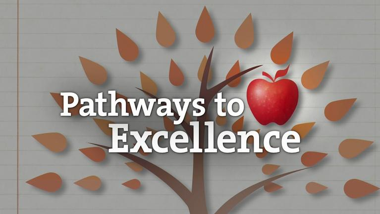 Pathways to Excellence: My School, Our Future 2016