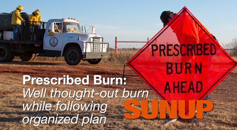 SUNUP: Planning Prescribed Burns