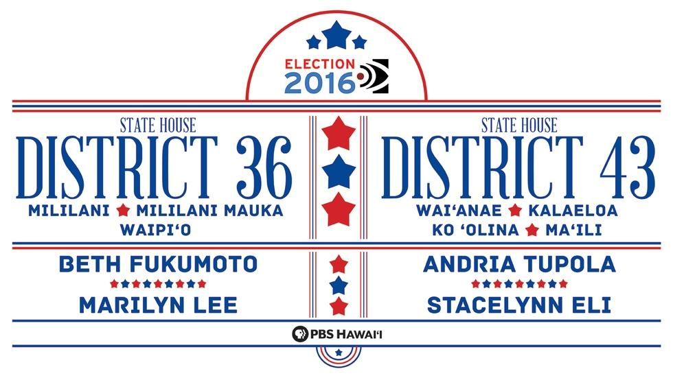 State House District 36 / State House District 43 image
