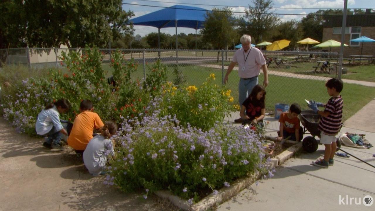 Bringing Nature Home | Central Texas Gardener | IdahoPTV