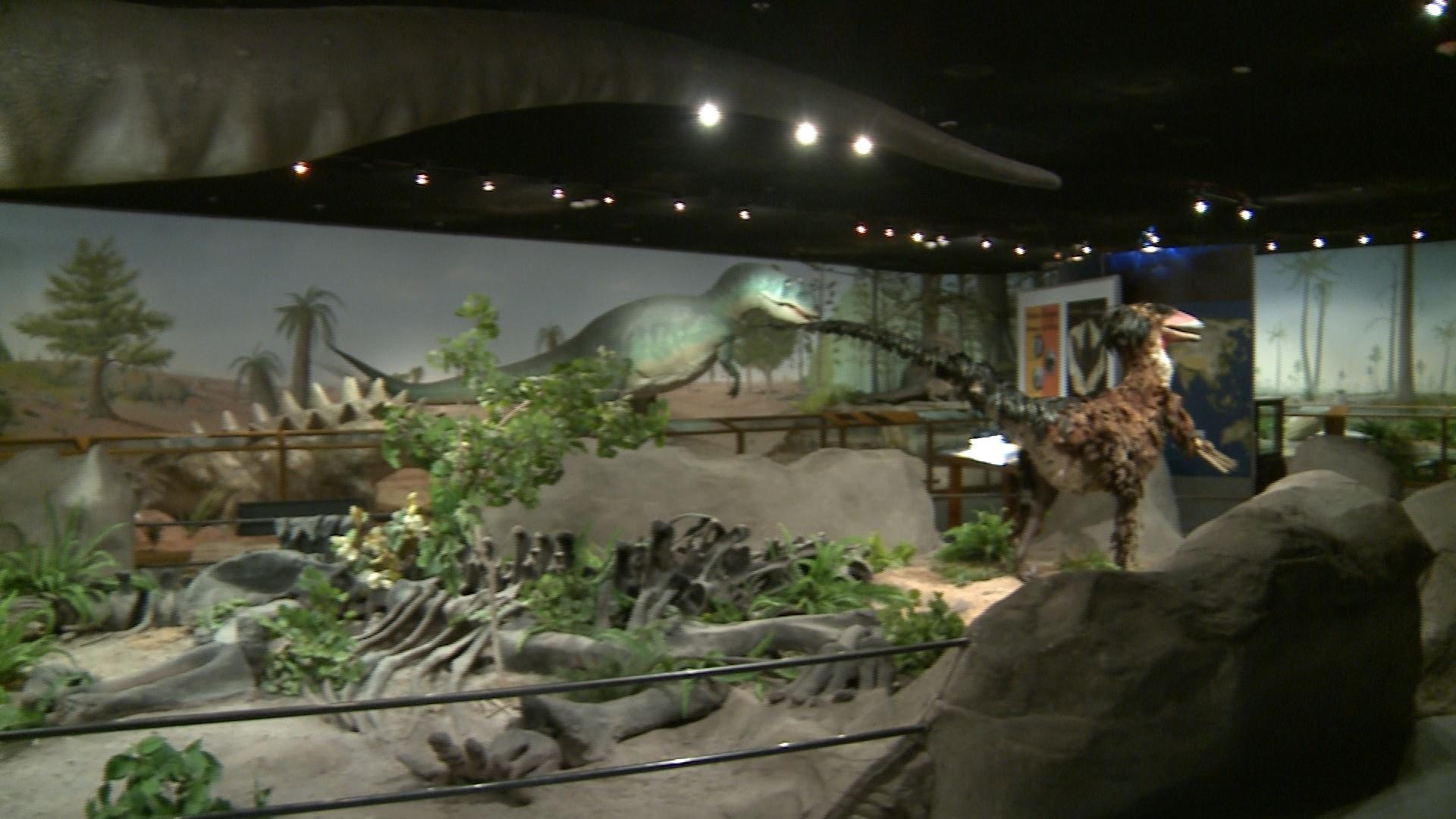 Lv Museum Of Natural History
