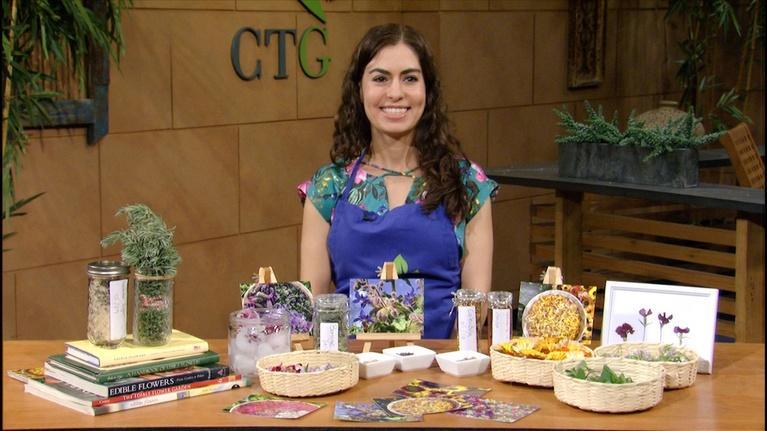 Central Texas Gardener: Succulent Plants + Edible Flowers