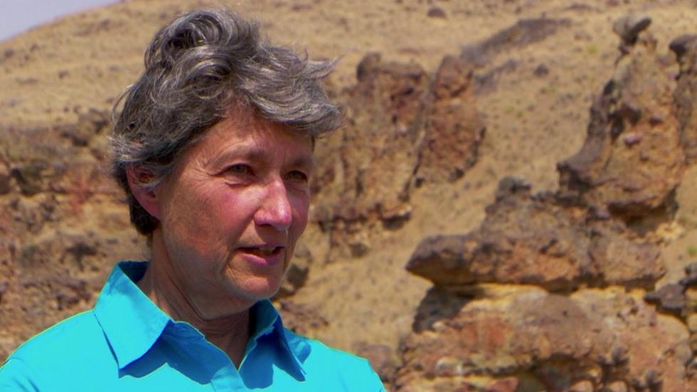Ellen Morris Bishop on the Concept of Paleoecology image