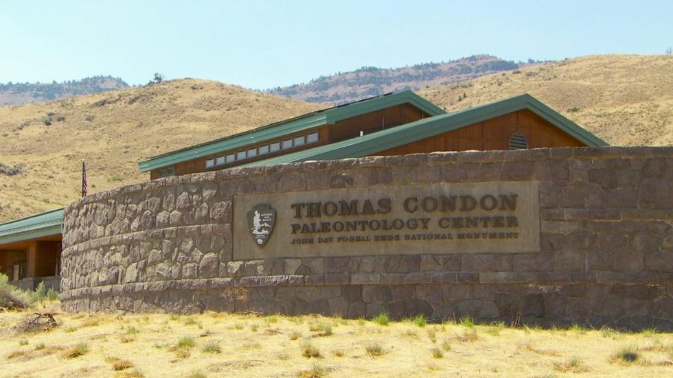 The Thomas Condon Paleontology Center image