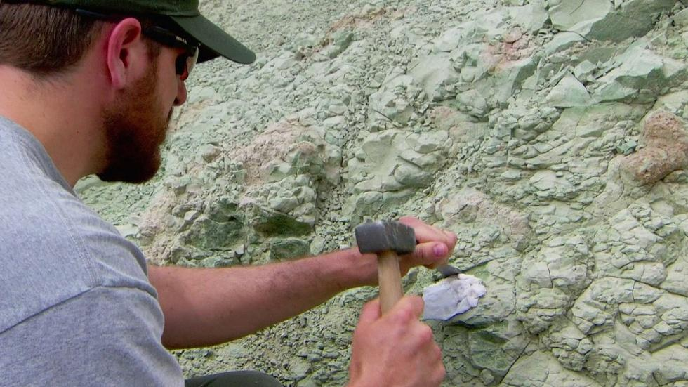 Recent Discoveries at the John Day Fossil Beds image