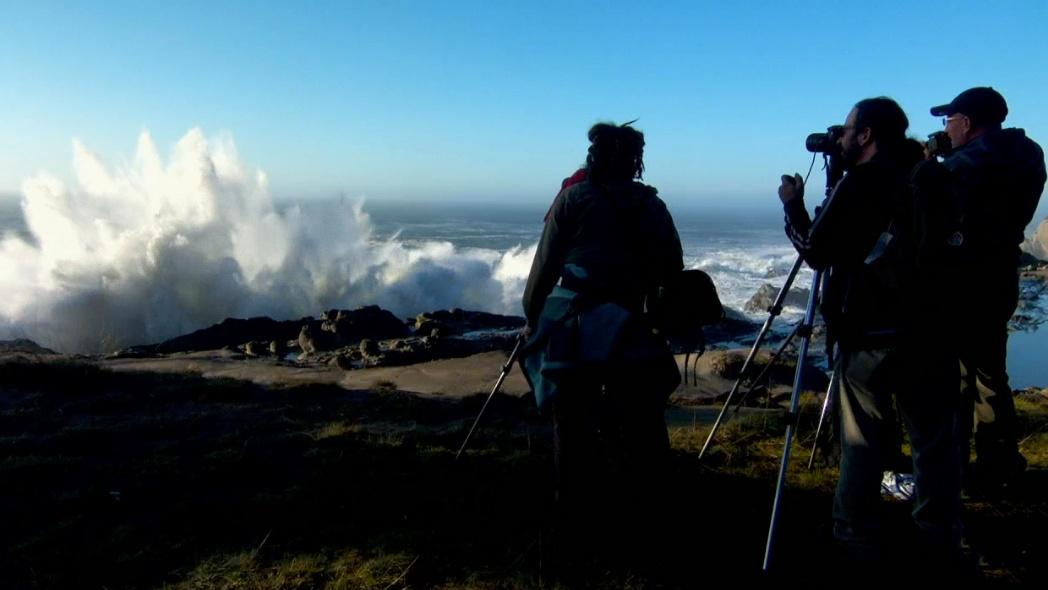 Giant Waves at Shore Acres. Episode aired on Oregon Field Guide on March 19, 2015.
