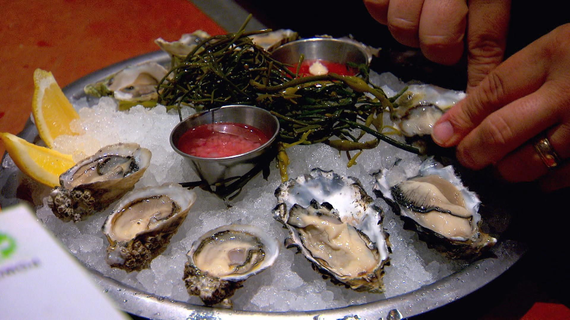 Netarts Bay is known for oyster cultivation. Oyster Meroir is the taste of place. Episode of Oregon Field Guide on November 5, 2015.