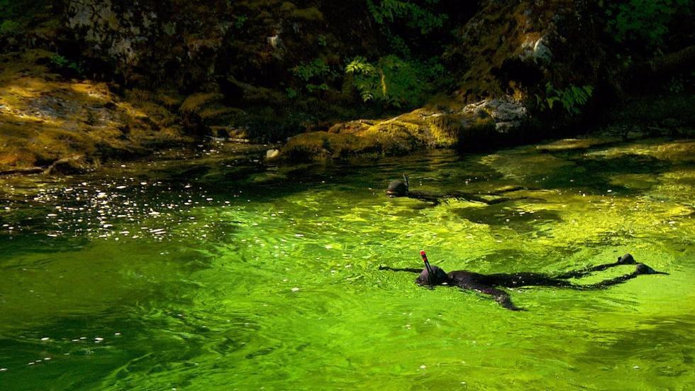 River Snorkeling image