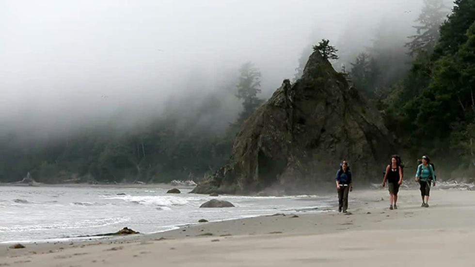 Backpacking the Olympic Coast image