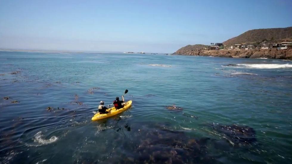 Kayaks and Kumiai image