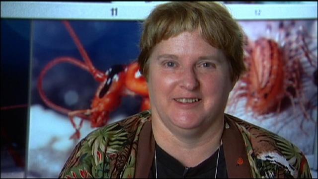 Scientist Profile: Entomologist