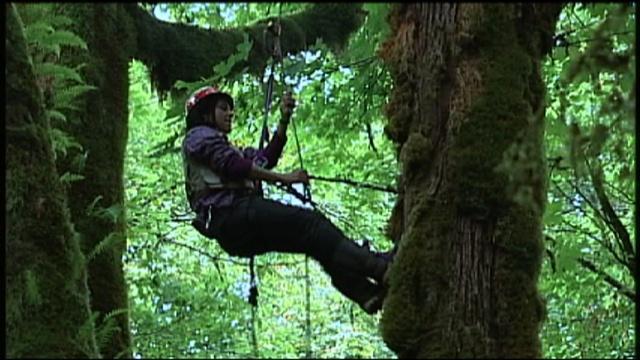 Perfil Científico: Ecóloga Forestal